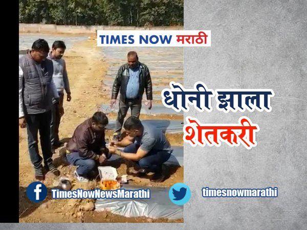 mahendra singh dhoni becomes farmer doing watermelon papaya cultivation watch video in marathi tvirl 99