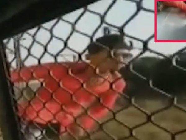 Train stunts kill youth from Kalyan
