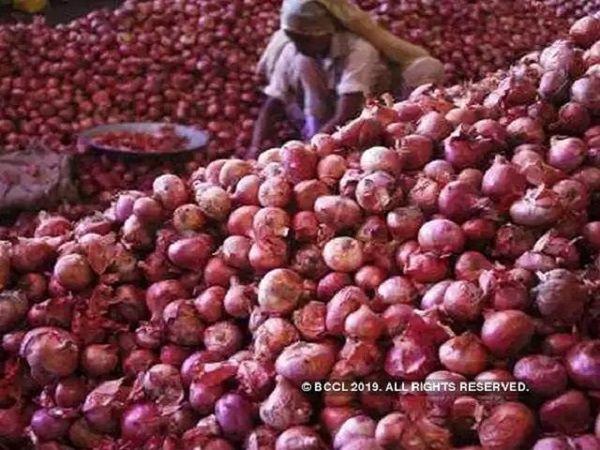 nashik 20 lakh cost onion stole shivpuri madhya pradesh crime news marathi