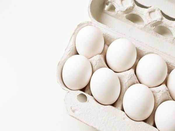 eggs eat up man dies rs 2000 challenge viral trending news marathi